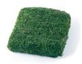 シートモスブロック 正方形 グリーン メーカー廃盤セール60%OFF