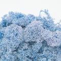 フィンランドモス ブルー  (※こちらの商品はご注文後の在庫確認取り寄せ商品になります。メーカーに在庫確認後、ご連絡させていただきます。)