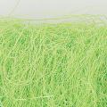 シサル麻 フレッシュグリーン