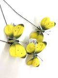 A-19002 蝶々×3 イエロー 特別割引