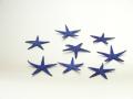 スターフィッシュ ブルー  サイズ 約3cm〜6cm