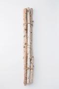 白樺枝・70cm・N