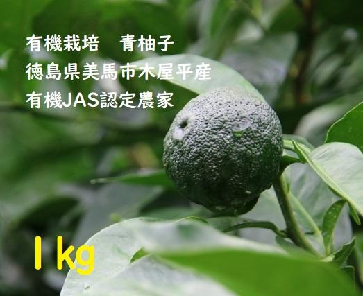【完売御礼!】有機栽培青柚子1kg 徳島県美馬市木屋平産 有機JAS認定農家