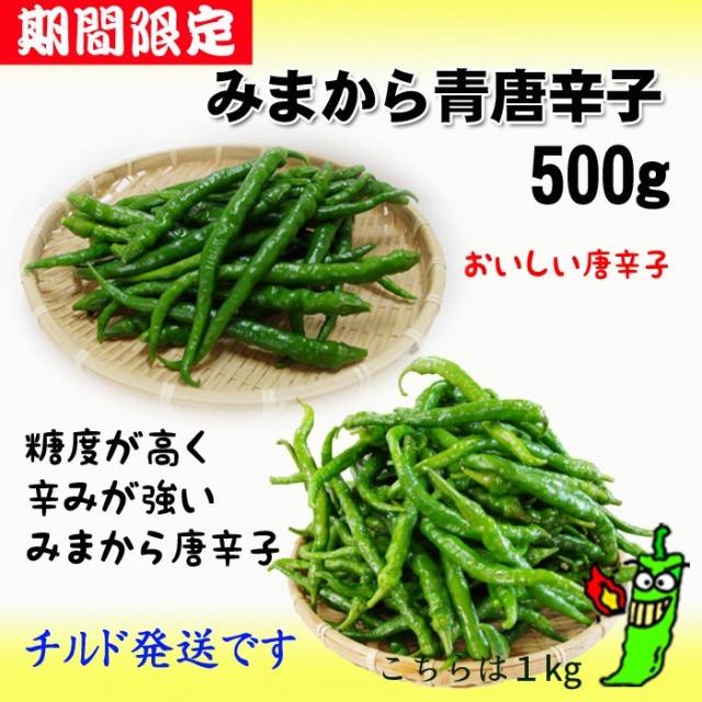2019年産【販売終了しました】みまから唐辛子(青生)500g