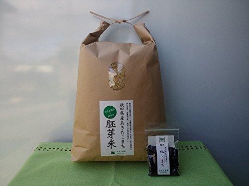 【胚芽精米】秋田県産 農家直送 水菜土農園の胚芽米 3kg 令和元年産 古代米付き