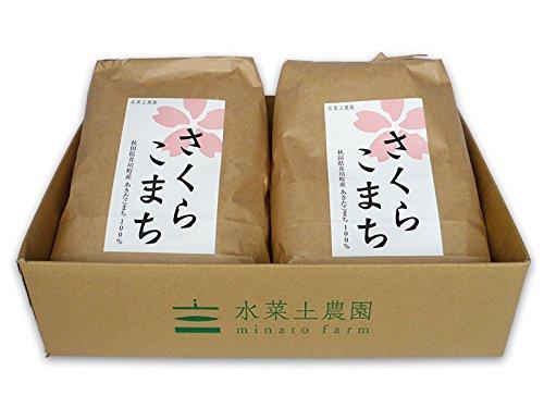 【美白無洗米】秋田県産 農家直送 さくらこまち 10kg(5kg×2袋)令和元年産 古代米付き