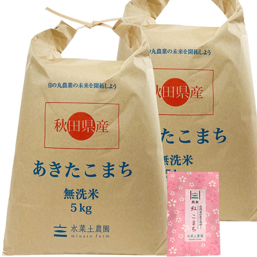 【無洗米】秋田県産 農家直送 あきたこまち 子どもに食べさせたいお米 10kg(5kg×2袋) 令和2年産 古代米付き