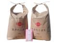 新米【5分つき精米】秋田県産 農家直送 あきたこまち 子どもに食べさせたいお米 10kg(5kg×2袋)令和元年産 古代米付き