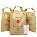 【玄米】秋田県産 農家直送 あきたこまち 子どもに食べさせたいお米 15kg(5kg×3袋) 令和2年産 古代米付き