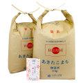 新米【定期便】秋田県産 農家直送 あきたこまち 子どもに食べさせたいお米 無洗米10kg(5kg×2袋) 令和2年産 古代米付き