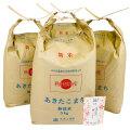 新米【定期便】秋田県産 農家直送 あきたこまち 子どもに食べさせたいお米 無洗米20kg(5kg×4袋) 令和2年産 古代米付き