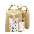 新米【美白無洗米】秋田県産 農家直送 さくらこまち 10kg(5kg×2袋)令和2年産 古代米付き