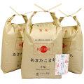 新米【定期便】秋田県産 農家直送 あきたこまち 子どもに食べさせたいお米 精米15kg(5kg×3袋) 令和2年産 古代米付き