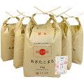 新米【定期便】秋田県産 農家直送 あきたこまち 子どもに食べさせたいお米 精米25kg(5kg×5袋) 令和2年産 古代米付き
