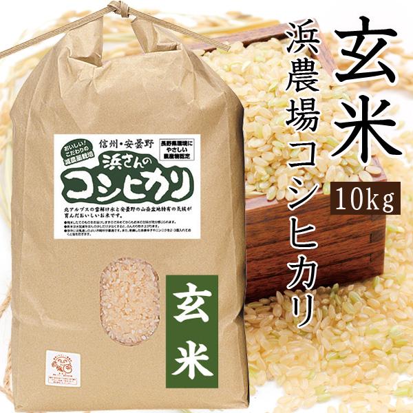 浜農場のコシヒカリ玄米 10Kg