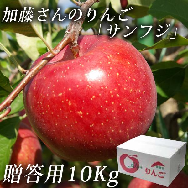 贈答用りんご10kg