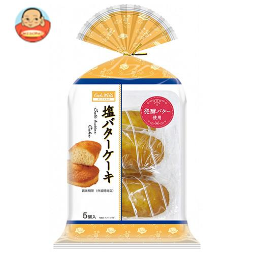 丸中製菓 塩バターケーキ 5個×6袋入