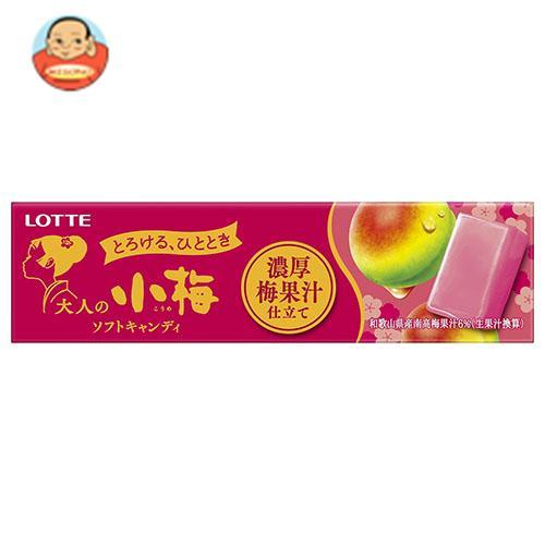 ロッテ 大人の小梅 濃厚梅果汁仕立て 10粒×10個入