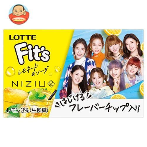 ロッテ Fit's ブルーミント 12枚×10個入