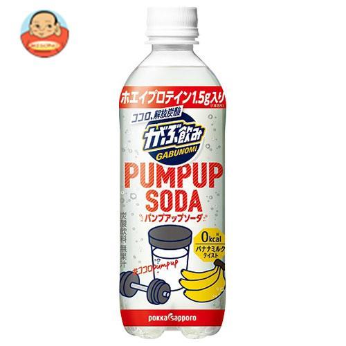 ポッカサッポロ がぶ飲み PUMP UP SODA (パンプアップソーダ) 500mlペットボトル×24本入