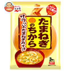 永谷園 たまねぎのちからみそ汁 46.8g(3食)×10袋入