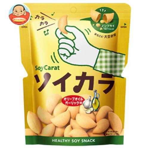 大塚製薬 ソイカラ(SoyCarat) オリーブオイルガーリック味 27g×18袋入