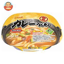 徳島製粉 金ちゃん亭 鍋焼カレーうどん 216g×12個入