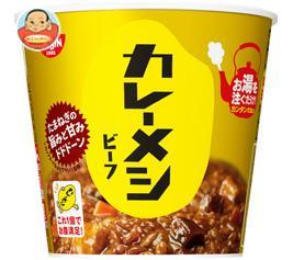 日清食品 日清 カレーメシ ビーフ 107g×6個入
