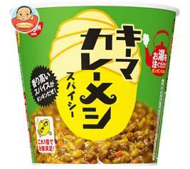 日清食品 日清 キーマカレーメシ スパイシー 105g×6個入