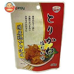 カンピー 国産 とりかわ 塩だれ味 40g×10袋入