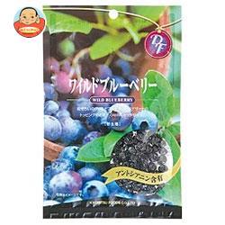 共立食品 ワイルドブルーベリー 52g×10袋入