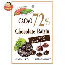 共立食品 ハイカカオチョコレーズン 40g×10袋入