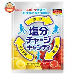 カバヤ 塩分チャージキャンディ 110g×10袋入
