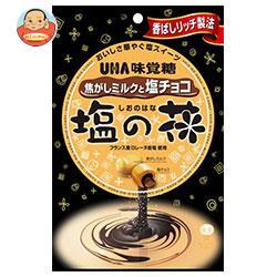 UHA味覚糖 塩の花 焦がしミルクと塩チョコ 80g×6袋入