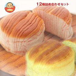 D-PLUS(デイプラス) 天然酵母パン 12種詰め合わせセット