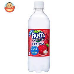 コカコーラ ファンタ よくばりミックスライチ+ソルト 490mlペットボトル×24本入
