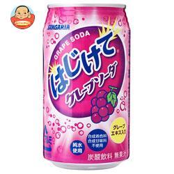 サンガリア はじけてグレープソーダ 350g缶×24本入