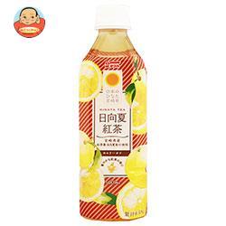 サンA 日向夏紅茶 HINATA TEA(ひなたティー) 500mlペットボトル×24本入