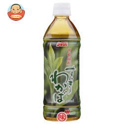 サンA 宮崎緑茶 すっきりわかば 500mlペットボトル×24本入