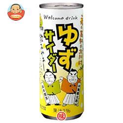 北川村ゆず王国 ゆずサイダー 250ml缶×30本入