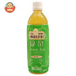 創健社 緑茶 500mlペットボトル×24本入