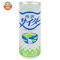 創健社 丹沢サイダー 250ml缶×30本入
