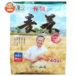 山城物産 国内産有機麦茶 ティーバッグ 10g×40P×15袋入