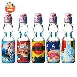 ハタ鉱泉 瓶ラムネJAPAN 200ml瓶×30本入