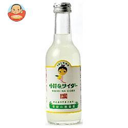 友桝飲料 小粋なサイダー(ゆず) 245ml瓶×24本入