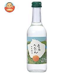 友桝飲料 タンカンサイダー 245ml瓶×24本入