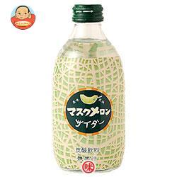 友桝飲料 マスクメロンサイダー 300ml瓶×24本入