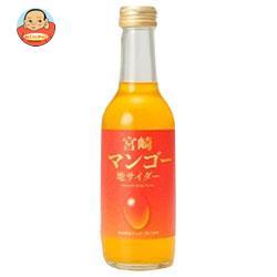 友桝飲料 宮崎マンゴーサイダー 245ml瓶×24本入