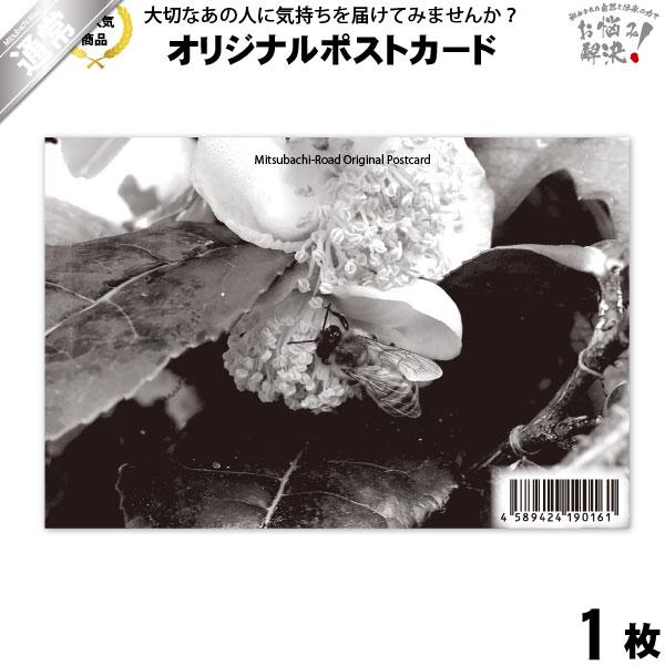 ポストカード 茶の花と共に (100×148mm)
