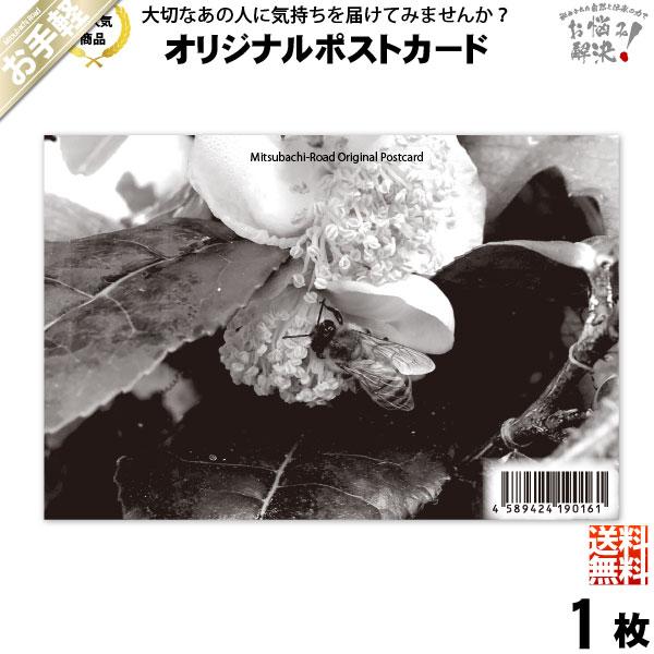 【お手軽】ポストカード 茶の花と共に (100×148mm)【送料無料】